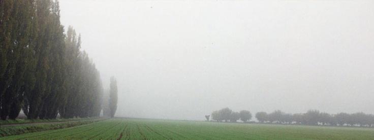 Nebbia a Bruso - Borgonovo Val Tidone