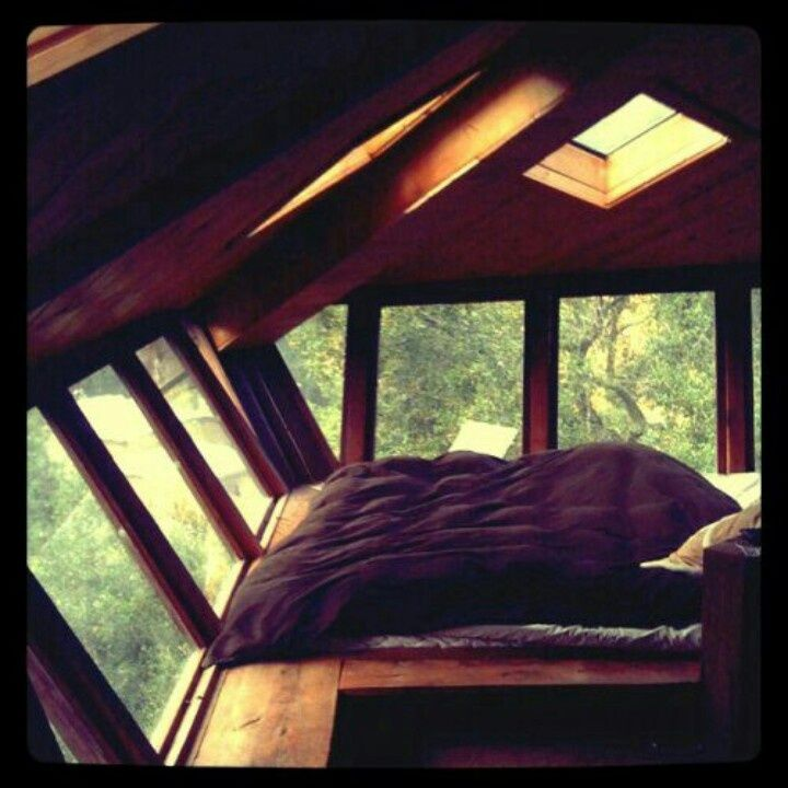 tree houses for adults | adult tree house | Goneology