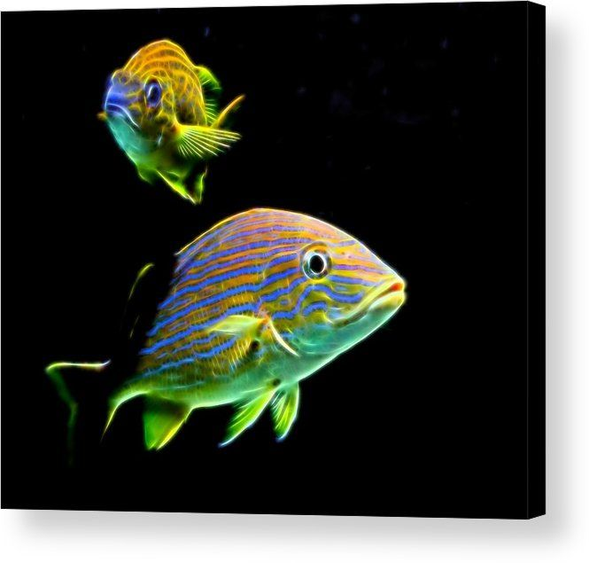 34 best Topaz Glow Creations images on Pinterest | Topaz ...