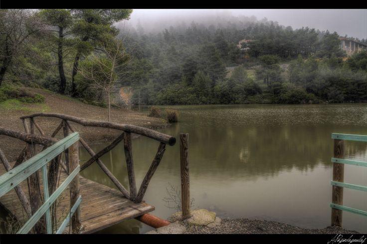 Foggy landscape -