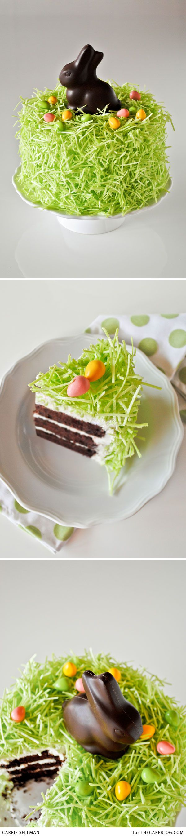 quite possibly the easiest Easter cake you'll ever make | DIY Chocolate Bunny Cake | by Carrie Sellman for TheCakeBlog.com