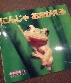 願えは届く   こんにちは和田のひきこもり 建築プランナー/住空間デザイナーの naomi です      もうすぐしたら梅雨ですね 今日は気持ちよい晴れでござった    先日のお話です  キャンプで カエル と初対面してから 叶クンがカエルにすごく興味をもった    そんな中保育園からこんな本をもらって帰宅    好きが倍増したららしく 毎晩のように就寝前に読まされる   そんな叶クンカエルをまた見たい  と言い出した    ここ和田は都会じゃーなかですけんど  かれこれ十数年 この辺でカエル目撃情報聞いたことないよ  わたしが中学生くらいまでは 田んぼとかまだ結構残ってたんだけどね     やけん  この辺じゃ難しいけん またキャンプ行ったときに探そうね  と言っておりました      ほしたらその翌日   仕事から帰宅してきたら 玄関の前に何か小さな物体が    んんっ     か カエルではないですかー     おったまげ    かわいそうやけん一晩だけよ と虫かごに捕獲   もちろん叶大喜び  かないくんがすきやけん カエルさんはあいにきてくれたんだね…