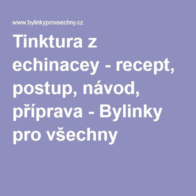 Tinktura z echinacey - recept, postup, návod, příprava - Bylinky pro všechny