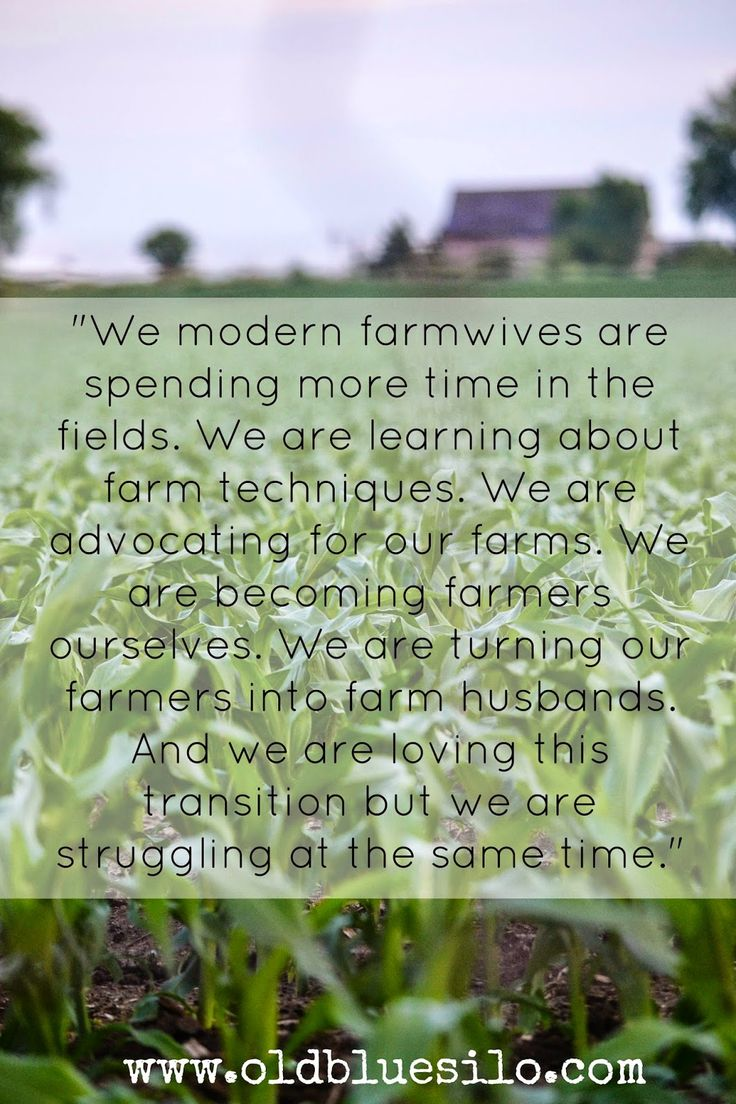 "Farm Life Quotes Sometimes I Struggle""  An Exeprt From A Modern Farm Wife Www"