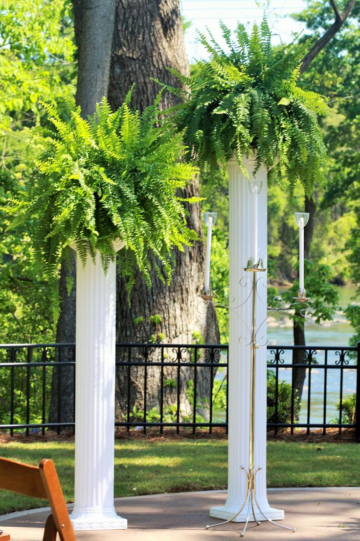 Wedding Decor Tall White Columns With Ferns Close Up