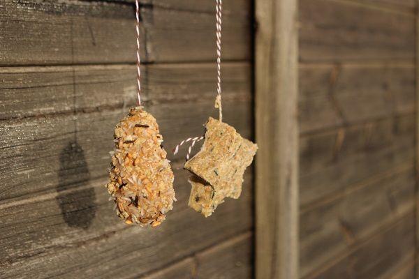 Maman Nougatine DIY: des mangeoires pommes de pin pour les oiseaux.