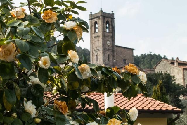Find out about spring weather in Italy, Italian festivals and holidays, and Italian food in spring. Here's a look at what Italy has to offer in spring.