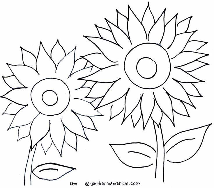 Mewarnai Gambar Bunga Matahari
