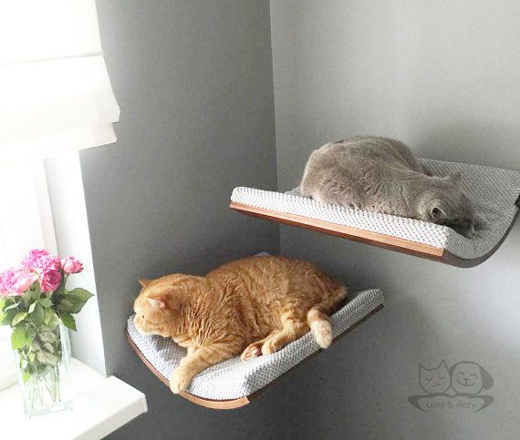 Cat accessories, cat shelves, cat furniture, pet design, cat bed, grey cat bed, maple,walnut and wenge shade of wood, cappuccino fabric