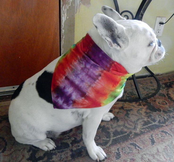 Tie Dye Dog or Human Bandana Multicolor Stripes One of a Kind -Carla Smale