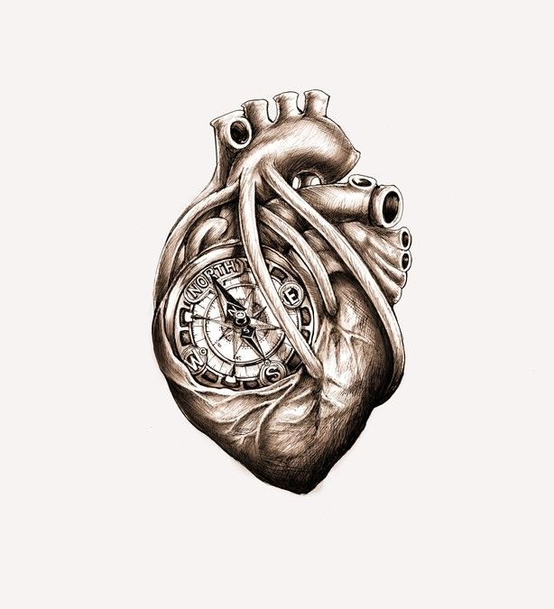 Greyscale Drawing of Da Vinci Anatomical Heart w/ Nautical Compass for Tattoo by simbe