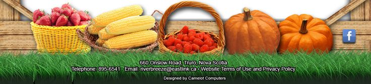 Nova Scotia Farm Markets, RiverBreeze Beef, Pork, Strawberries,Sweet Corn, mega corn maze,haunted corn maze and upick.