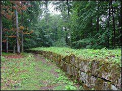 Panoramio - Photo of Sarmizegetusa Regia - Zidul cetăţii ( Murus dacicus )