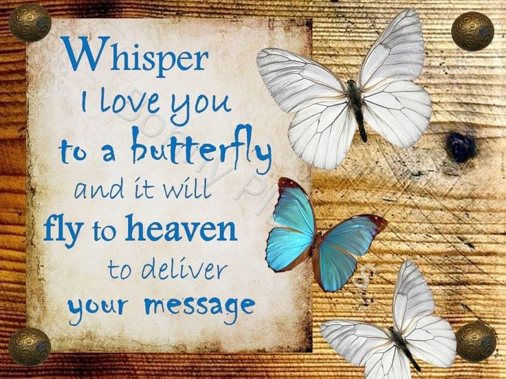 Whisper I love you to a butterfly, fly, heaven, memorial ...