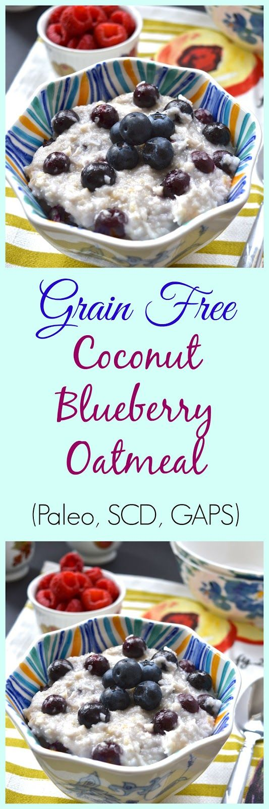 Pure and Simple Nourishment : Coconut Blueberry Paleo Oatmeal (AIP, Gluten Free, GAPS, SCD)