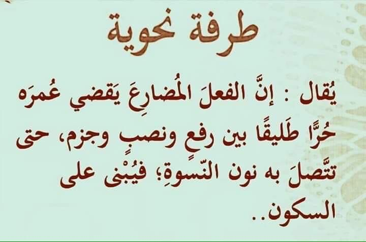 طرفة نحوية Beautiful Arabic Words Funny Words Book Qoutes