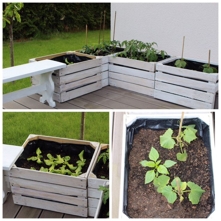 Ich würde gerne viel mehr Obst und Gemüse im Garten anbauen, leider fehlt der Platz und es sind viele fressende Tierchen unterwegs. Deswegen probieren wir es nun mit kleinen Hochbeeten: http://mamahochdrei.de/2015/05/05/creadienstag-hochbeete-aus-alten-obstkisten-upcycling/