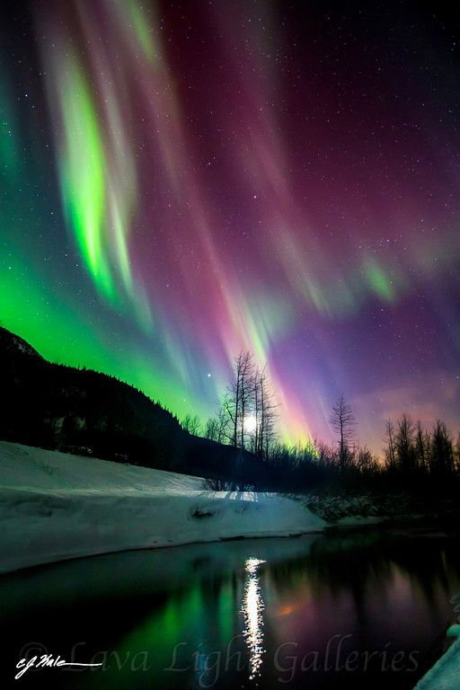 Aurora, Alaska CJ - lava-light-galleries.I want to go see this place one day.Please check out my website thanks. www.photopix.co.nz