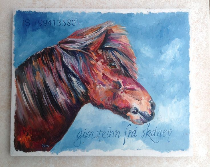 Olieverf IJslands paard Gimstein fra Skaney / John Karanelan