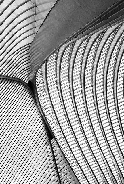 Calatrava lines V by jefvandenhoute