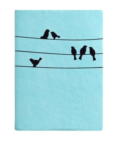 Take a look at this Light Blue Bird on a Wire Essential Journal by Eccolo on #zulily today!