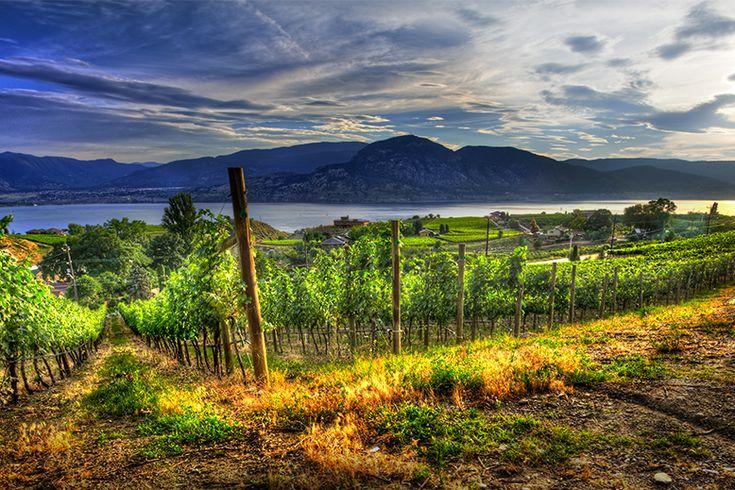 Penticton winery