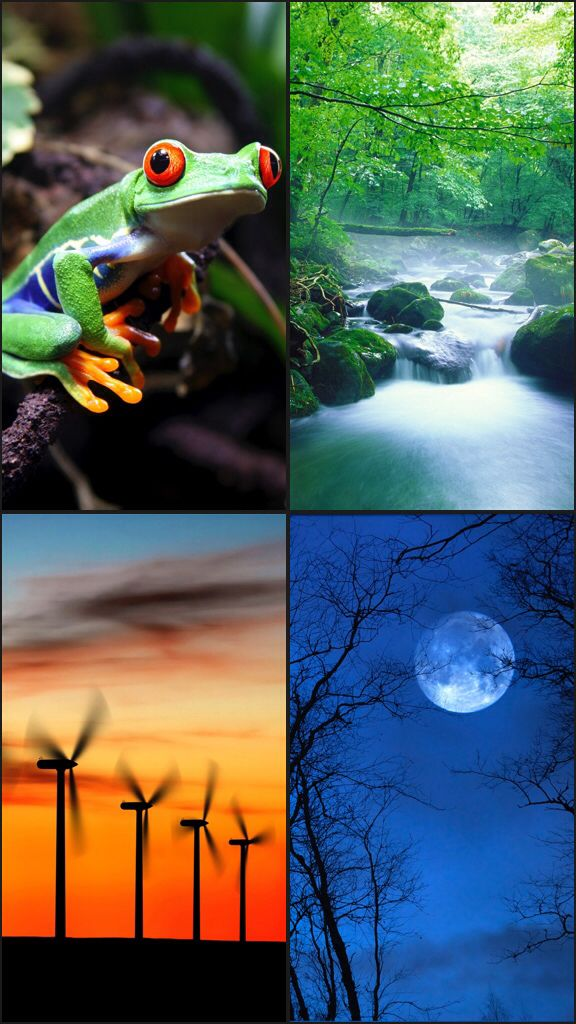 Listening to my mix of Wind, Crickets, Frogs, Stream with White Noise Free by TMSOFT.