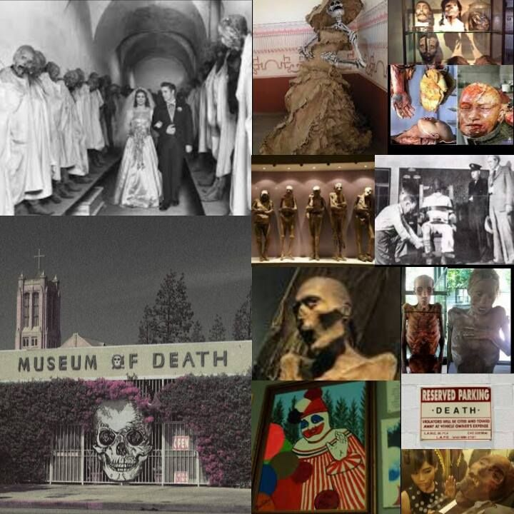 The Museum of Death houses the world's largest collection of serial murderer artwork, photos of the Charles Manson crime scenes, the guillotined severed head of the Blue Beard of Paris (Henri Landru), original crime scene and morgue photos from the grisly Black Dahlia murder, a body bag and coffin collection, replicas of full size execution devices, mortician and autopsy instruments, pet death taxidermy, and so much more!