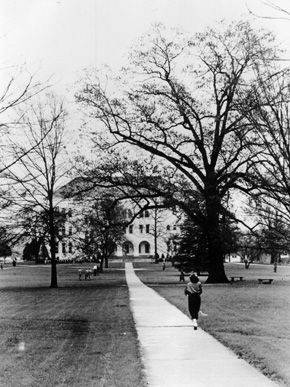 """A student walks toward the """"Old Main"""" and the Sherman Oak (to the right of the building) on the East Lake campus of Howard College (now Samford University) in the 1950s. The college relocated to the Birmingham suburb of East Lake in 1887 and then to the Shades Valley community near Birmingham in 1957."""