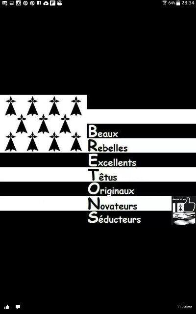 Écrit noir sur blanc/blanc sur noir ! :-) Tout à fait la descriptions de breton et bretonne comme nous !