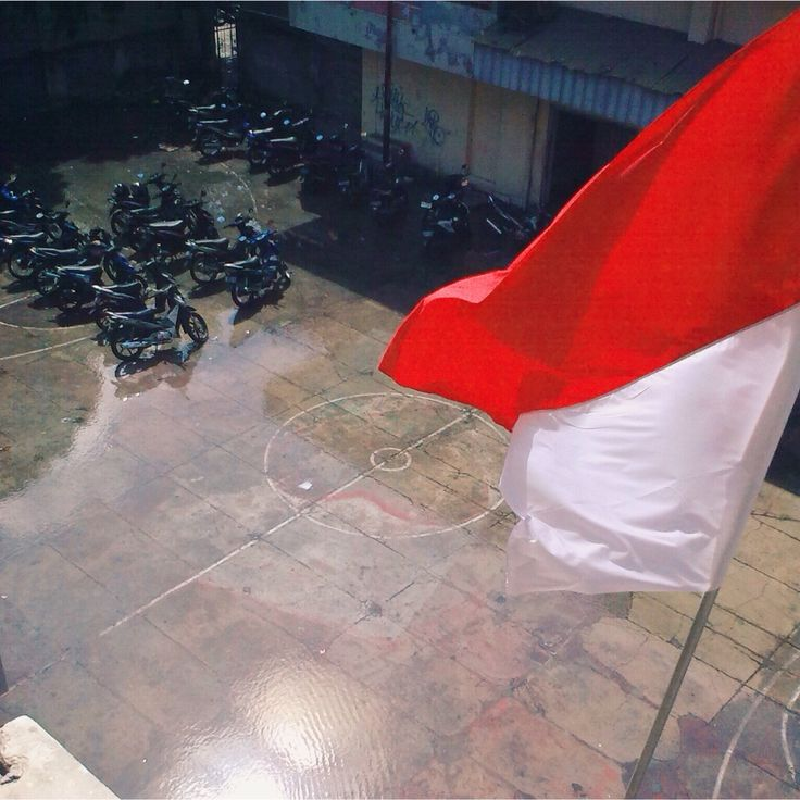 Damn ! I love Indonesia ! But I might like my school basketball-parking thing . Lol