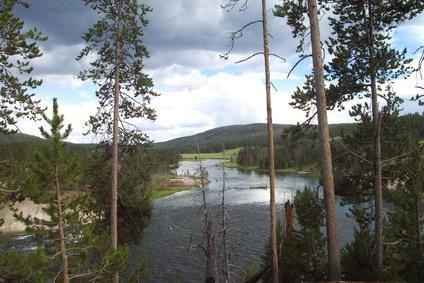 RVs are welcome in Yellowstone National Park. Good info on the different rv spots.