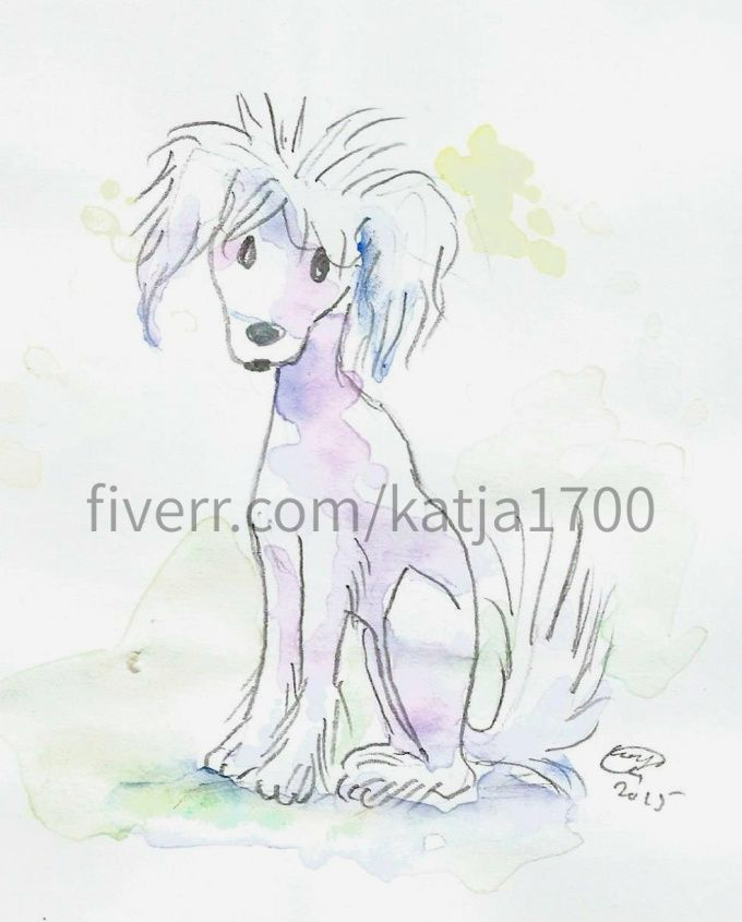 Chinese Crested - dog portrait in cartoony cute children's book illustration.. .