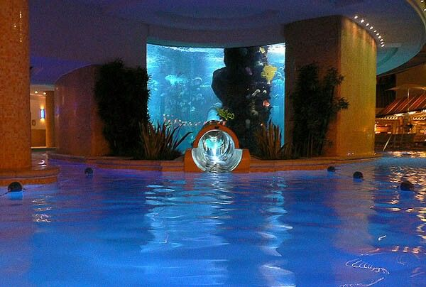 the water slide in this las vegas swimming pool of the golden nugget hotel runs directly through the hotels giant aquarium which is full of tuna sharks