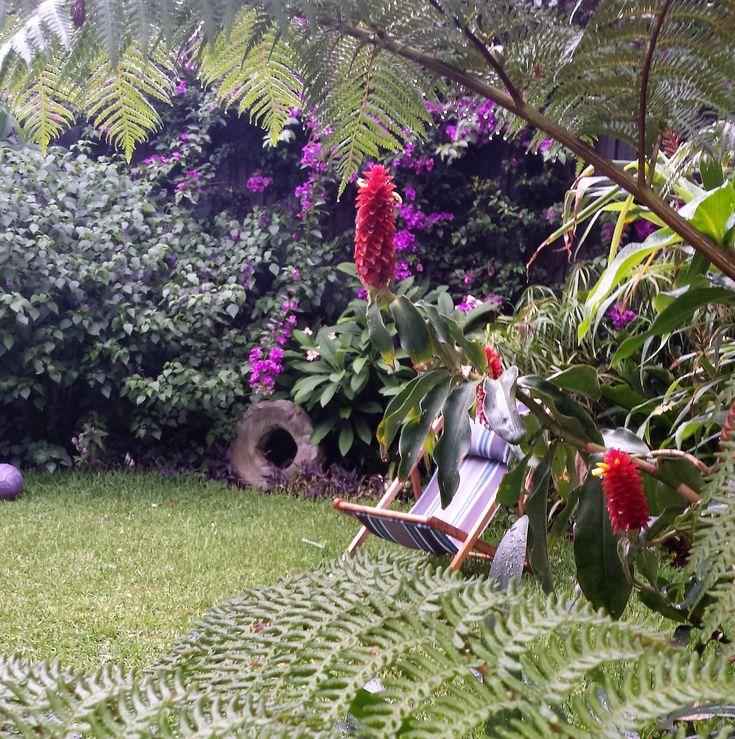 Tropical-style garden, Bondi Beach Sydney