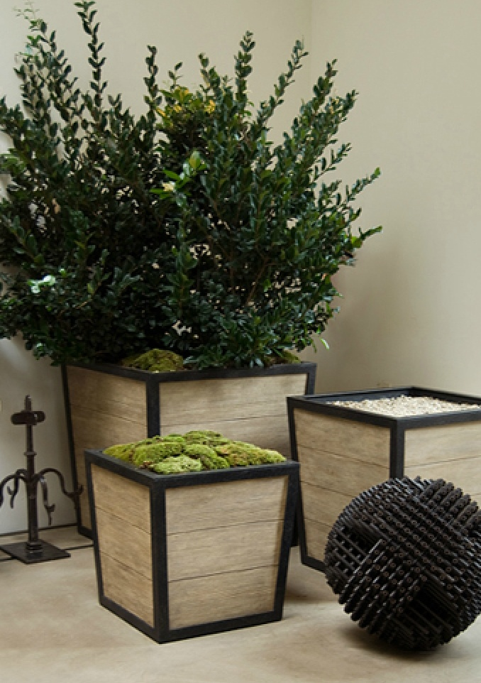 Boxwood Planter From Www.formationsusa.com. Boxwood PlantersLarge  PlantersOutdoor DecorOutdoor ...