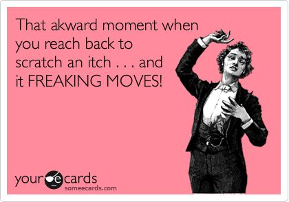 That akward moment when you reach back to scratch an itch . . . and it FREAKING MOVES!