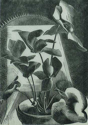 Cyclamen - GERTRUDE HERMES - wood engraving