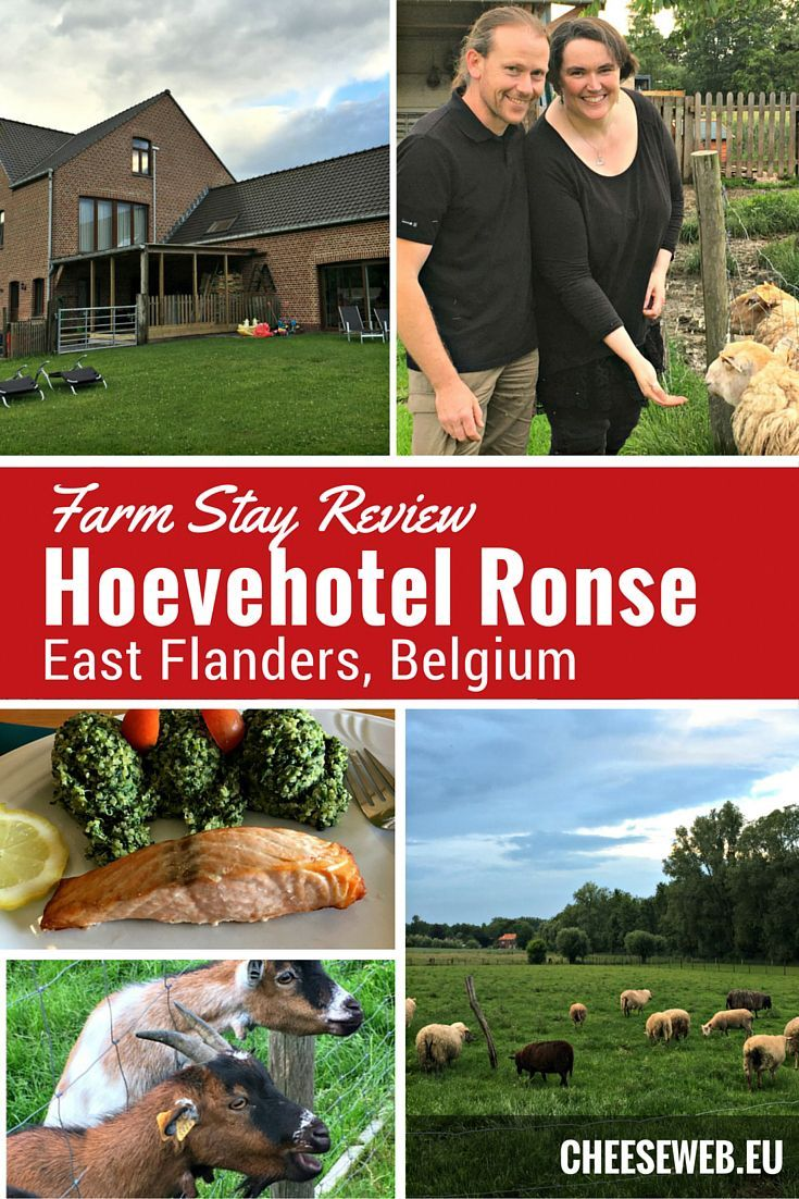 Enjoy a farm-stay in East Flanders, Belgium, at the Green-Key certified Hoevehotel Ronse.