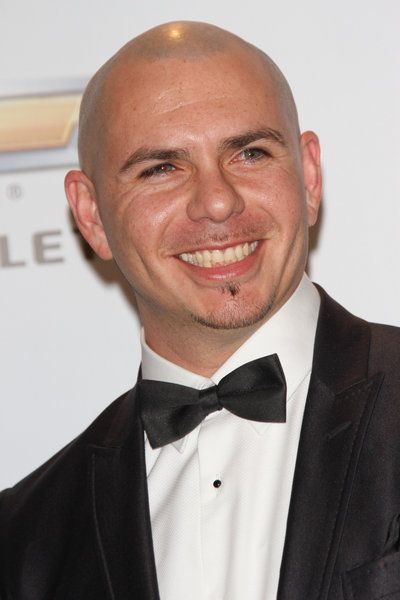 17 best images about pitbull on pinterest stage name
