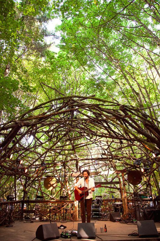 Destroyer on the Woods Stage, Pickathon 2014 | Photo by Kristina Moravec and KEXP
