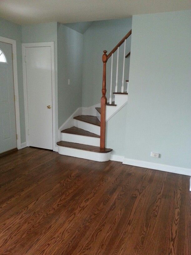 sherwin williams sea salt paint colors pinterest stairs sherwin williams sea salt and salts. Black Bedroom Furniture Sets. Home Design Ideas