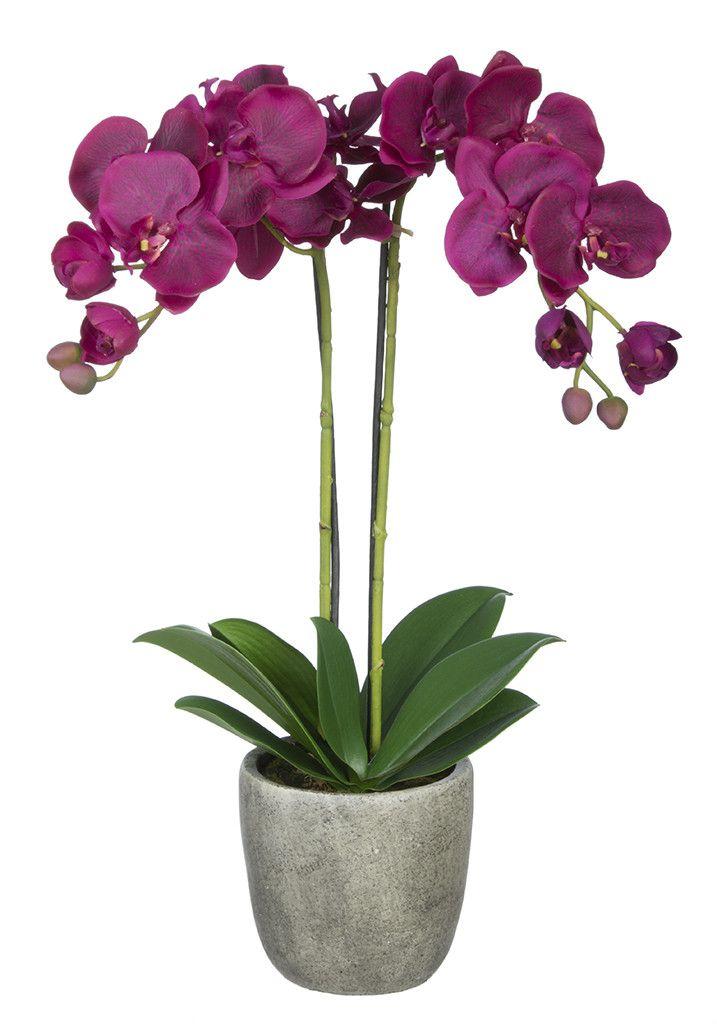 Easy Flower Arrangements top 25+ best easy flower arrangements ideas on pinterest | diy