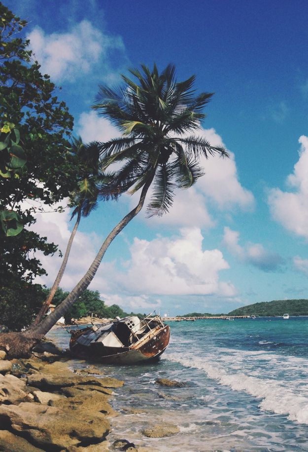 Vieques, Puerto Rico with Kids