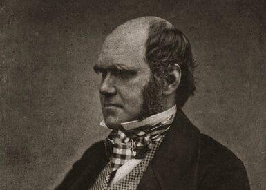 Charles Darwin's Five Years Circling the Globe Aboard HMS Beagle.: Charles Darwin