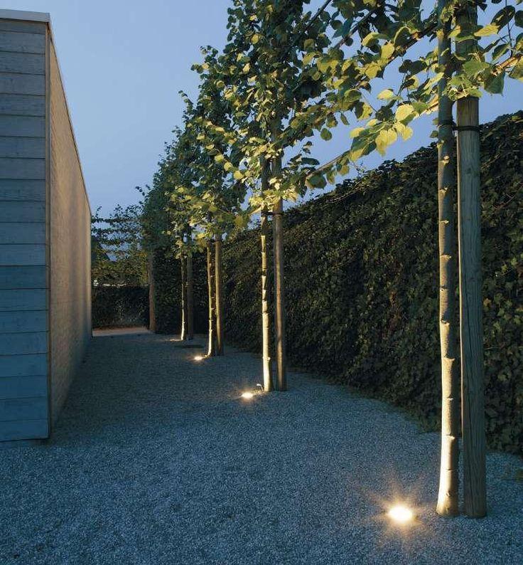Bomen of struiken kun je mooi uitlichten met een spot