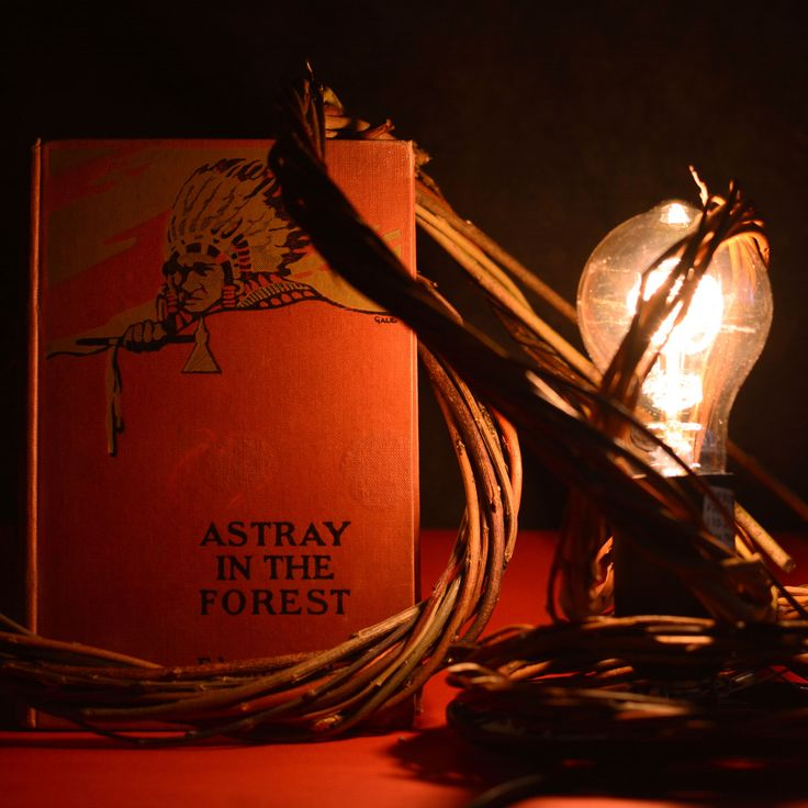 Astray into the forest with this epic title by Edward S.Ellis. Did you know that Ellis was a young school teacher when he published his most successful book Seth Jones or Captives of the Frontier, in 1860. Ellis was a major author of adventure stories during the nineteenth century era and wrote under dozens of pseudonyms, as well as his own name, and was so prolific, there is no complete listing of his works. ⠀ ⠀ Browse beautiful vintage books like this today, by clicking the link in our…