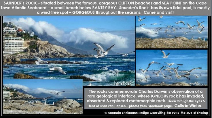 Atlantic Seaboard, #capetown - wind-free, breathtakingly gorgeous, throughout the seasons.  Gulls out in full force.