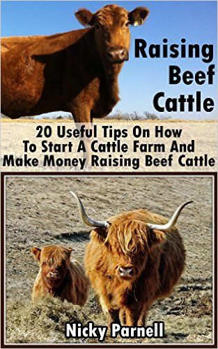 Amazon.com: Raising Beef Cattle: 20 Useful Tips On How To Start A Cattle Farm And Make Money Raising Beef Cattle: (How to Build a Backyard Farm, Raising Beef Cattle) ... How to build a chicken coop, Raising Beef) eBook: Nicky Parnell: Kindle Store