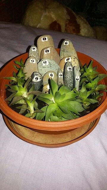 Flowerpot with stone eyes